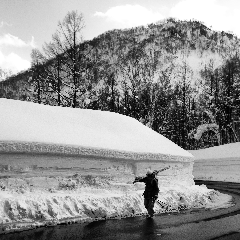 Jake dwarfed by snow drifts