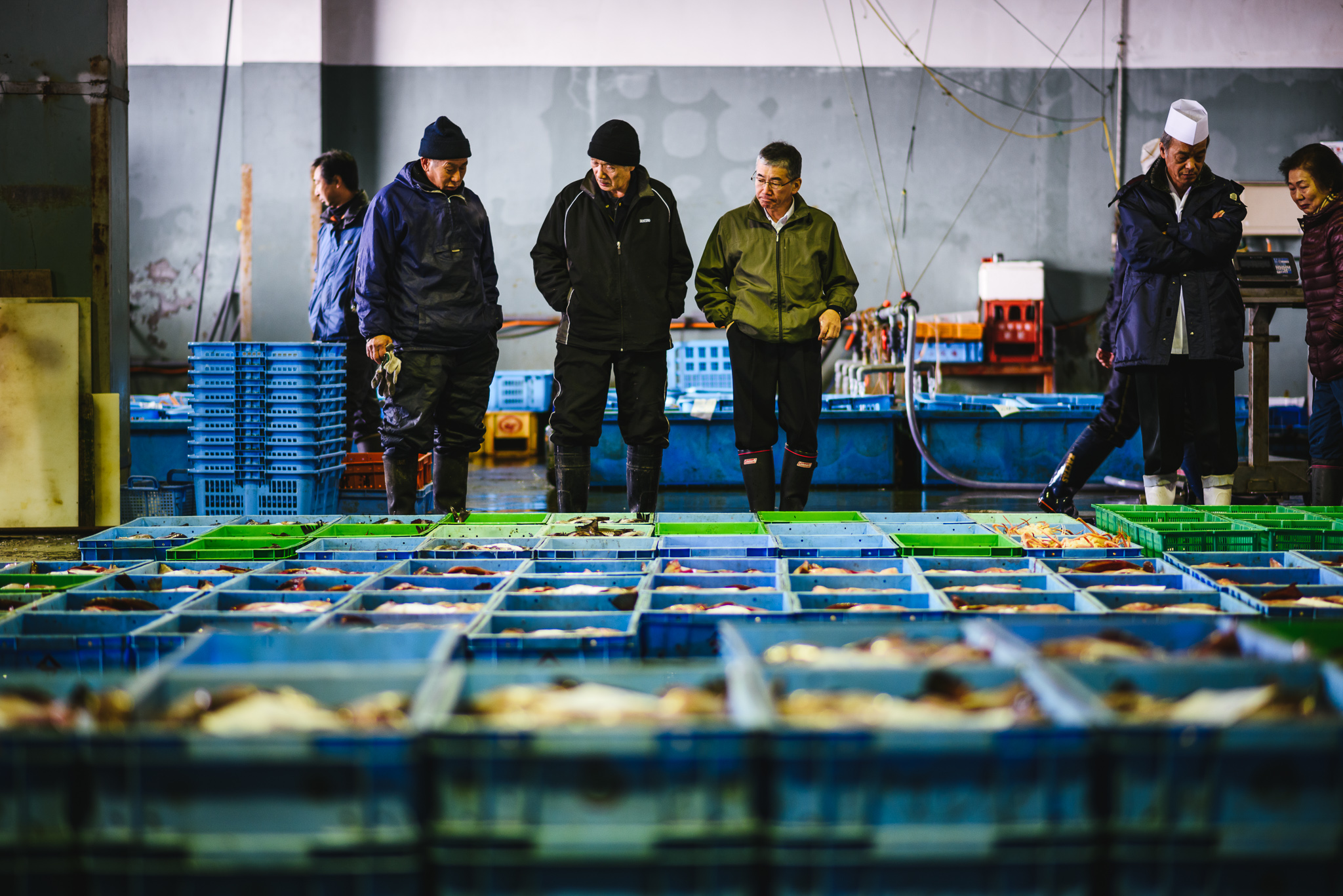 Hokkaido fish market