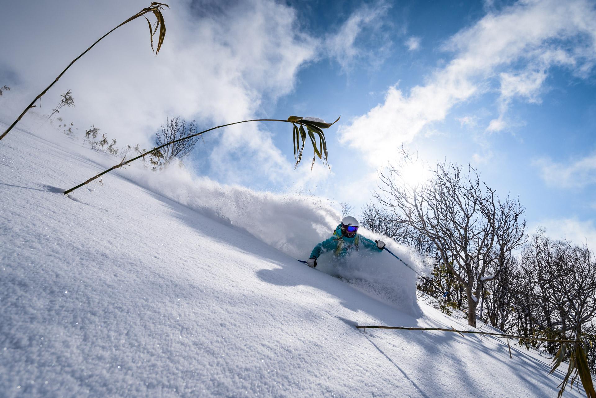 Andrew Strain photo of blue sky pow at Moiwa