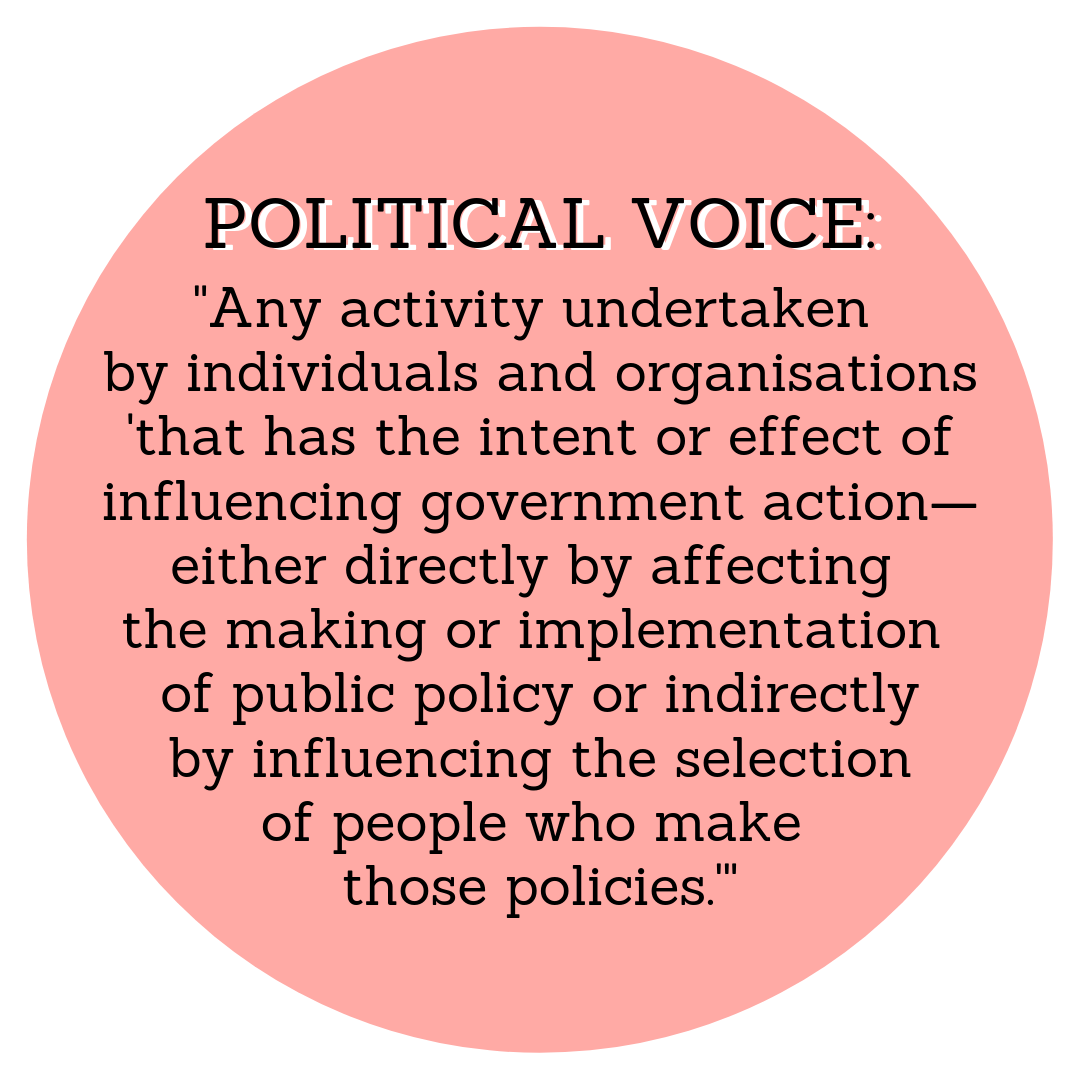 """Any activity undertaken by individuals and organisations 'that has the intent or effect of influencing government action—either directly by affecting the making or implementation of public policy or indirectly by influencing the selection of people who make those policies.'"" -  Verba, Schlozman, and Brady"