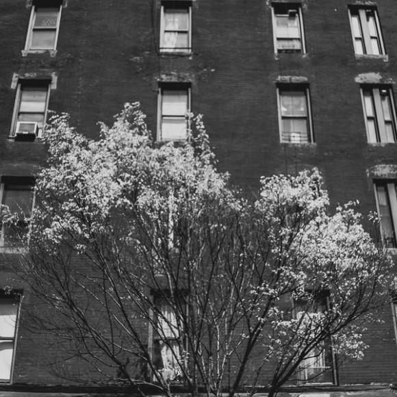 NYC93029-580x580.jpg