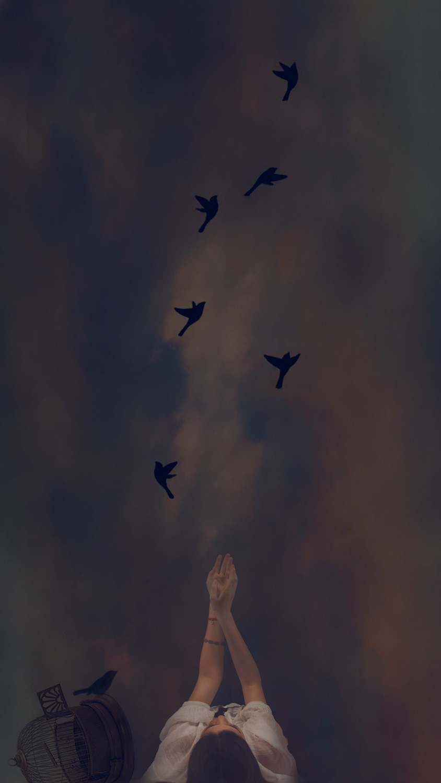 Segah - Birds.jpg