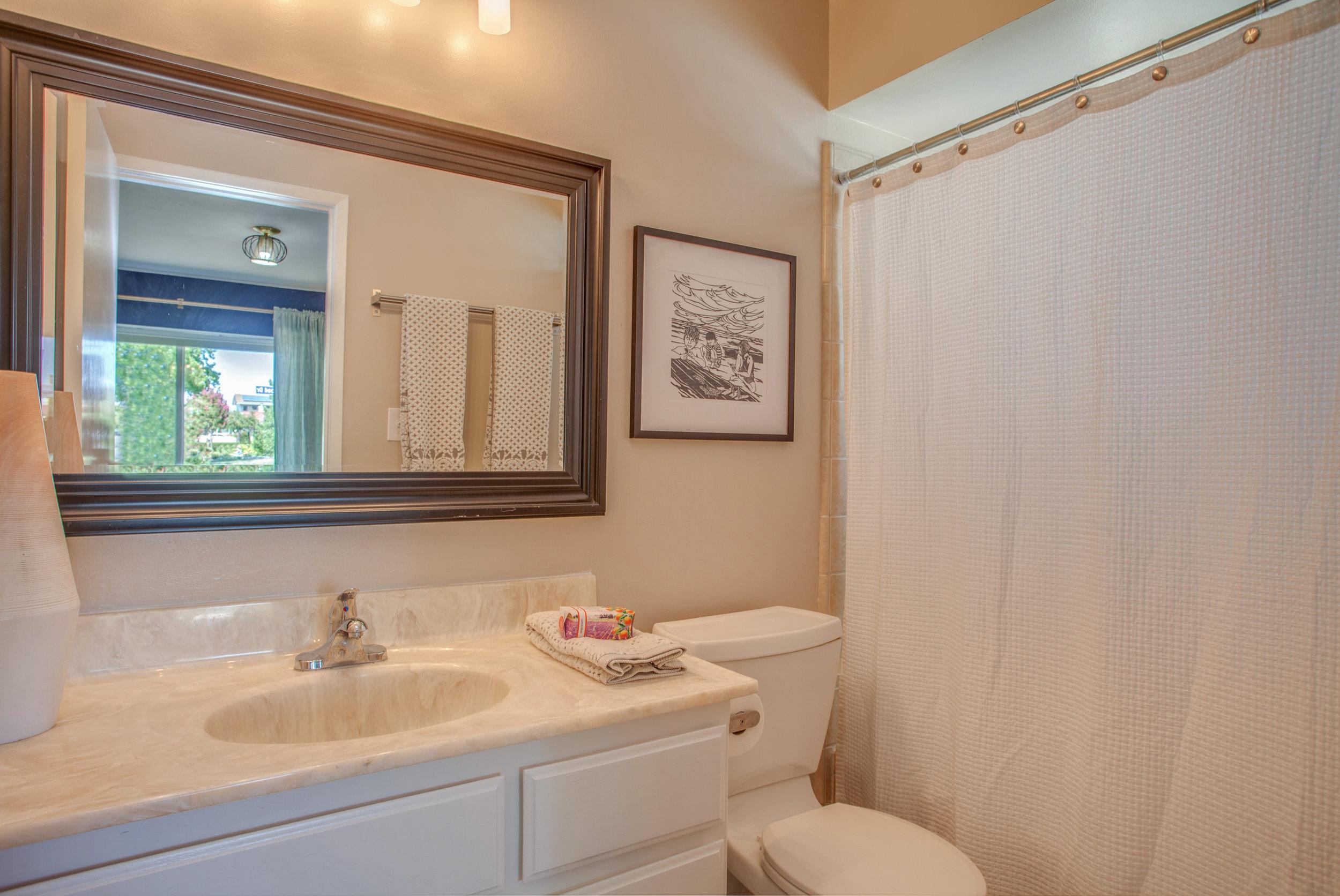 1730_silverwood_drive_MLS_HID1119713_ROOMmasterbathroom.jpg