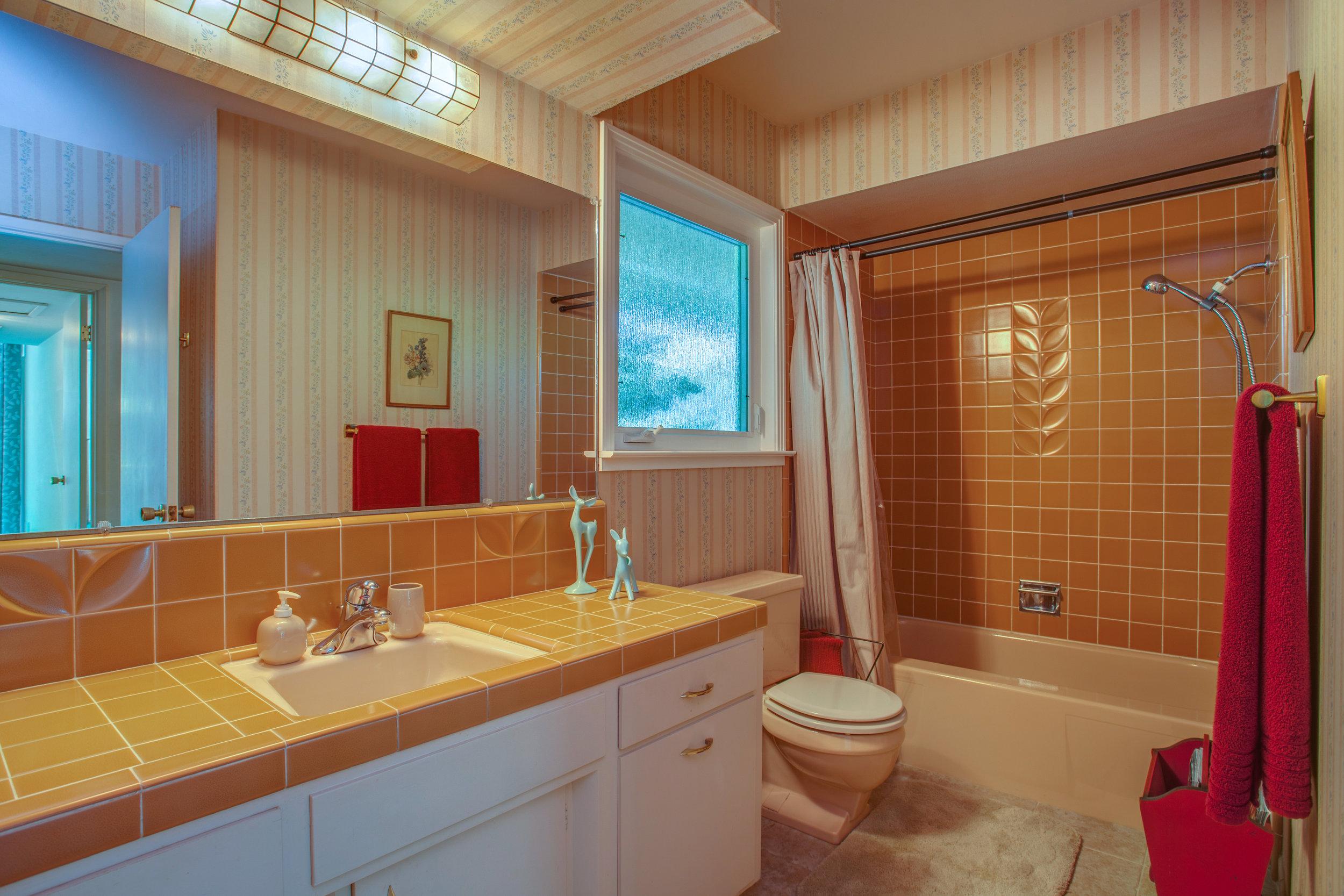 20745_ashley_way_MLS_HID1147504_ROOMfullbathroom.jpg