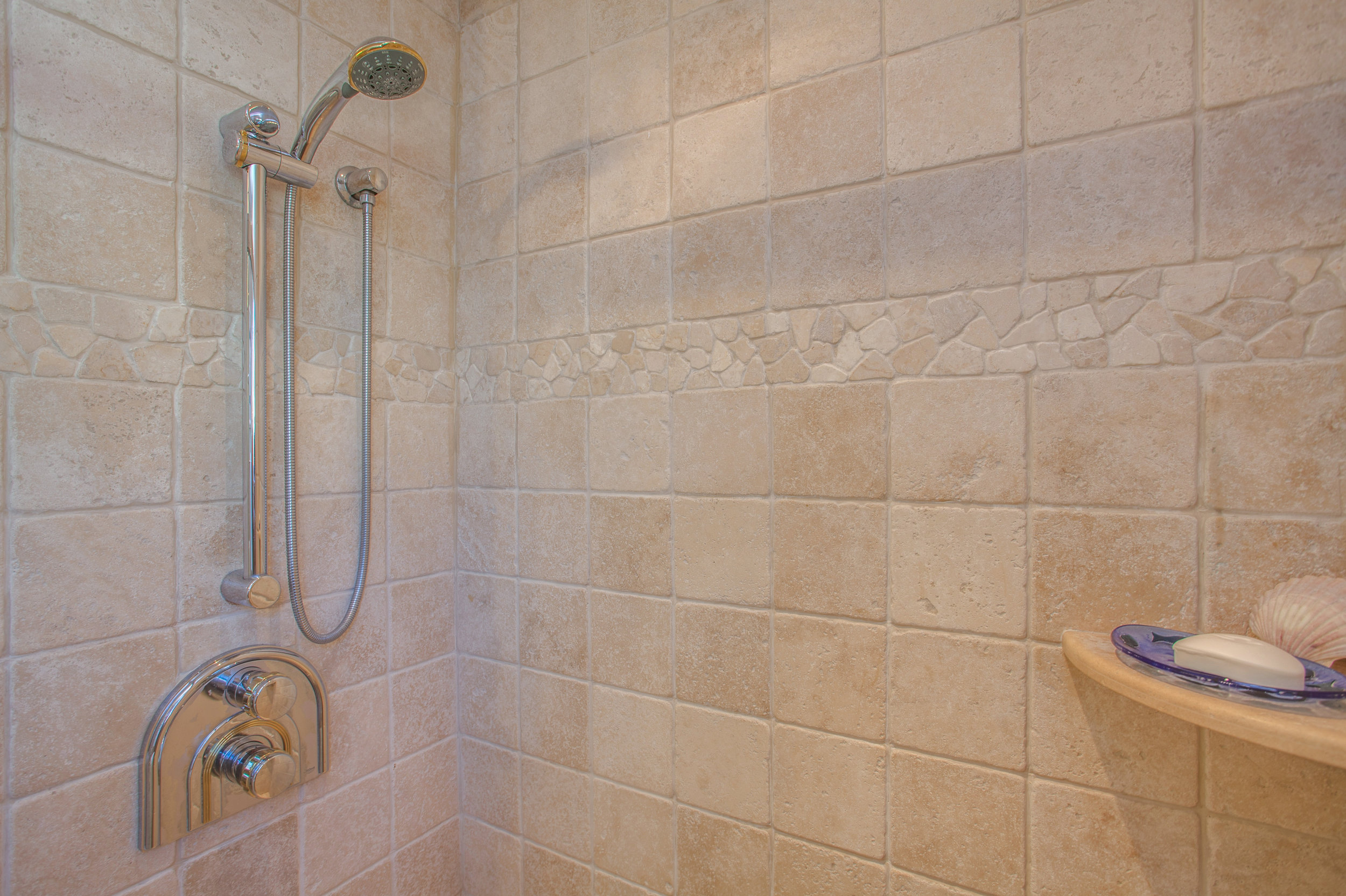 1727_silverwood_drive_MLS_HID1159197_ROOMshower.jpg