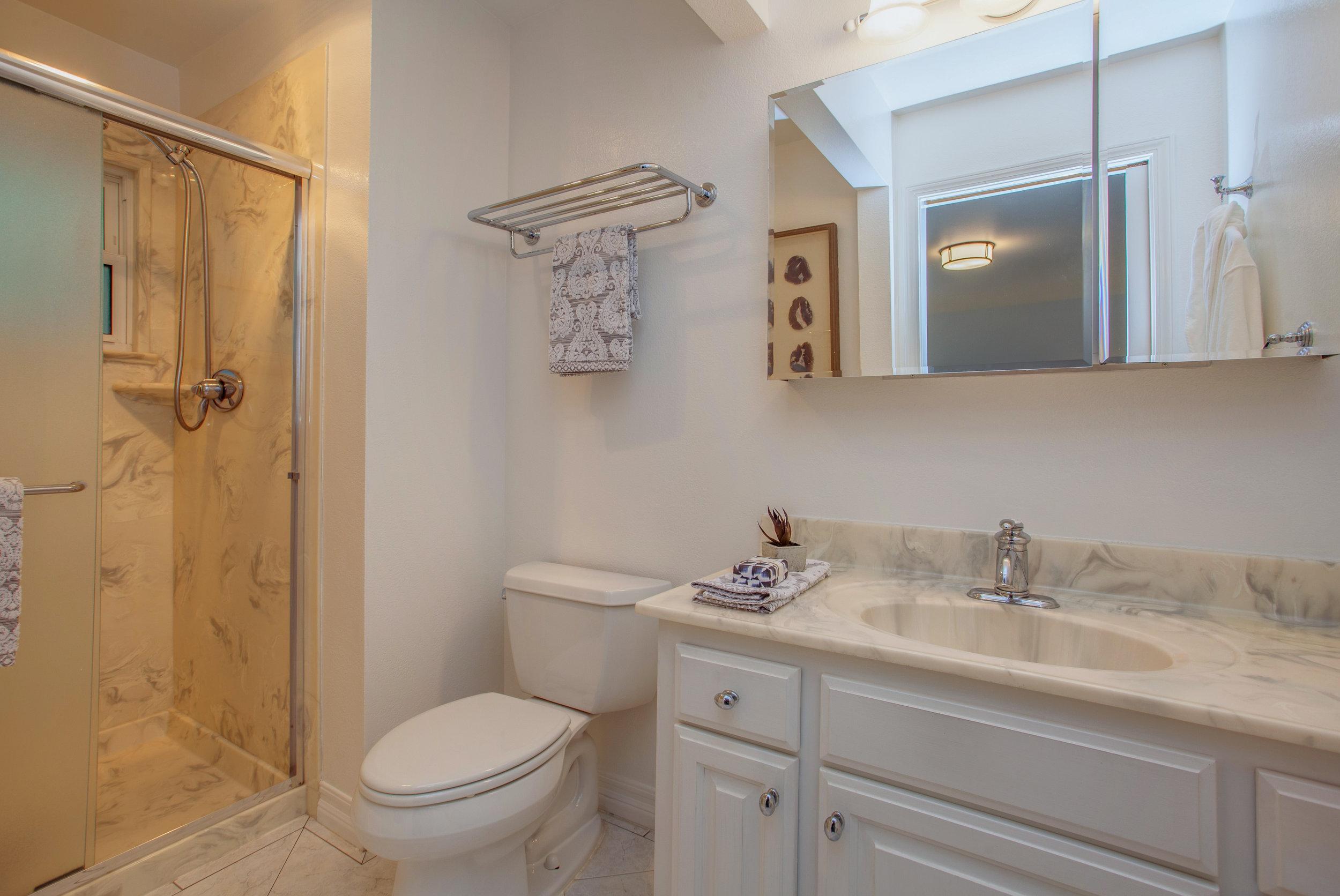 4388_hendrix_way_MLS_HID1161978_ROOMmasterbathroom.jpg