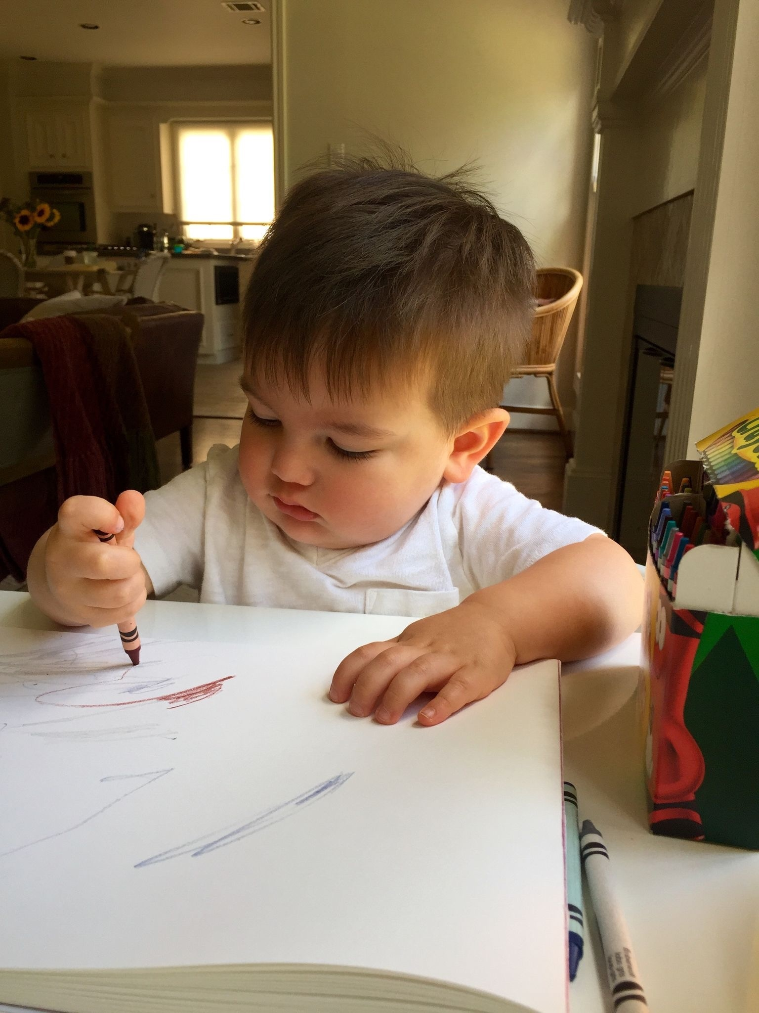 Hard at work on his coloring (20 months)