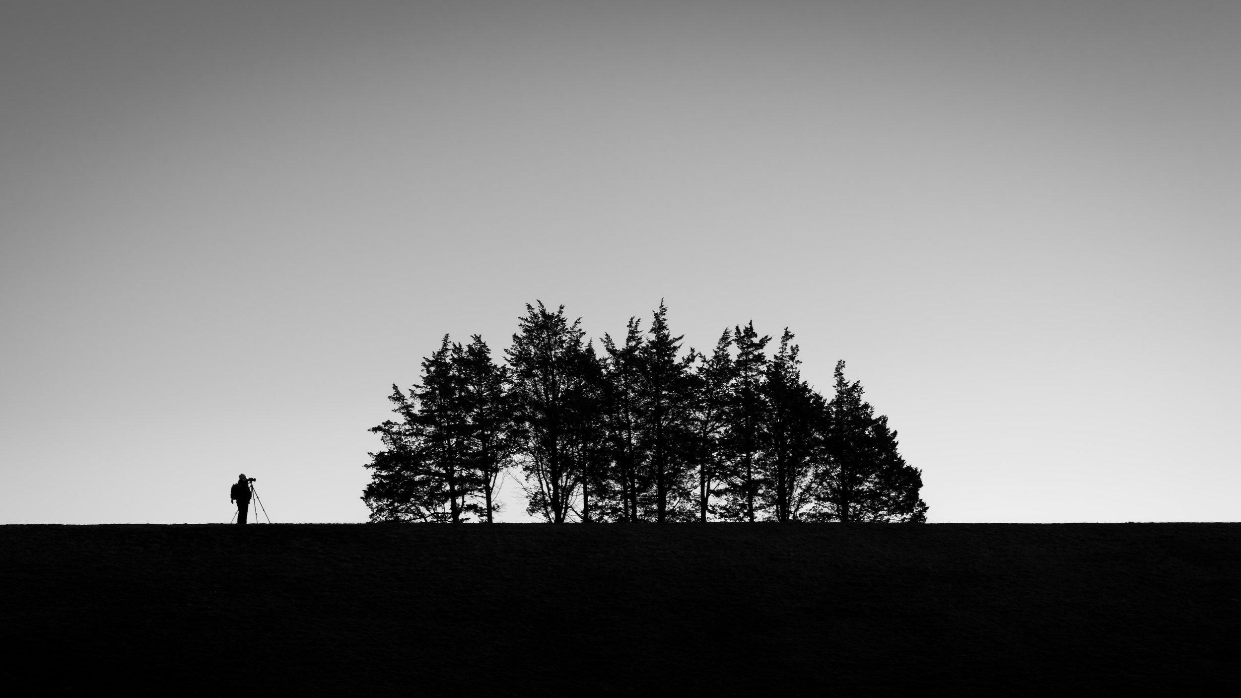 A Different Kind of Landscaper