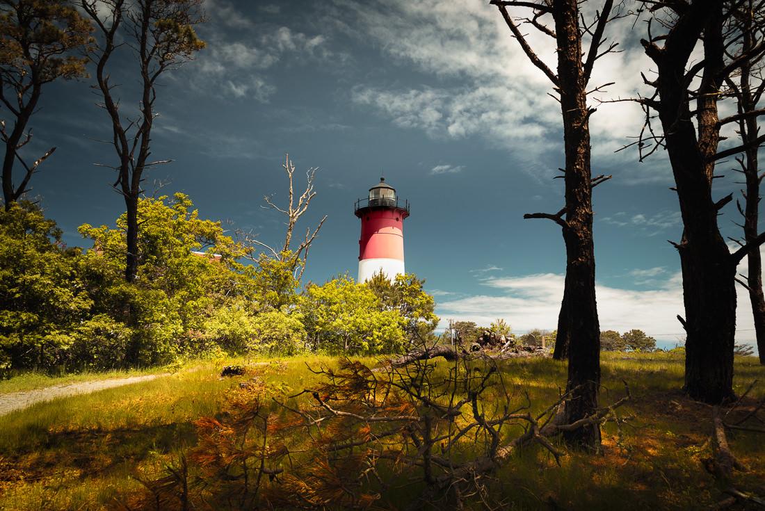 Cape Cod Trail Mix