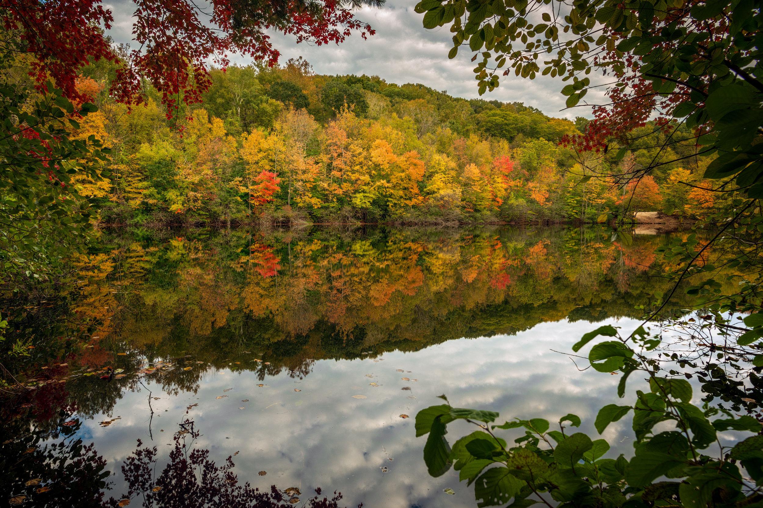 Autumnal Frame of Mind #2