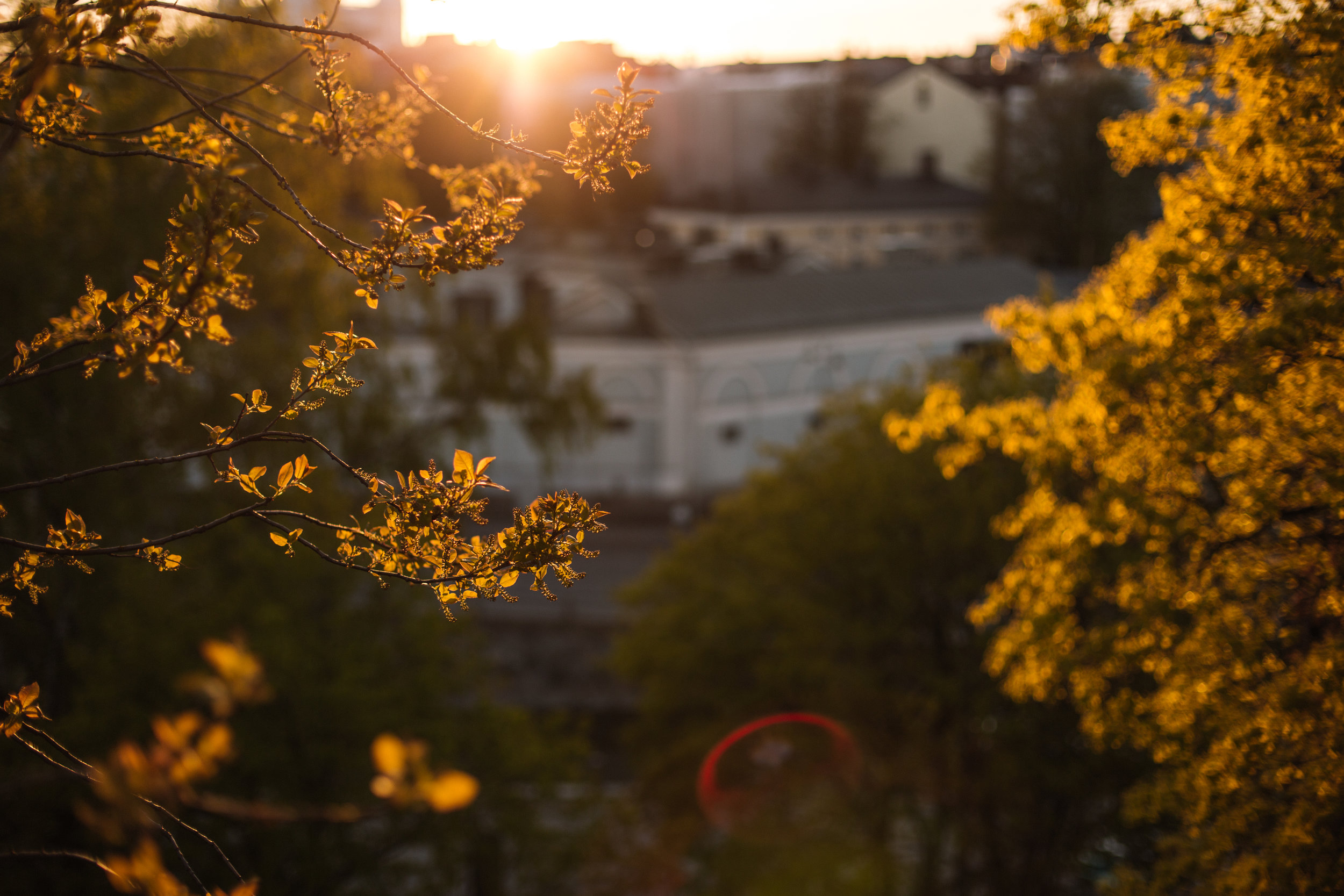 Finland_0519_0025.JPG