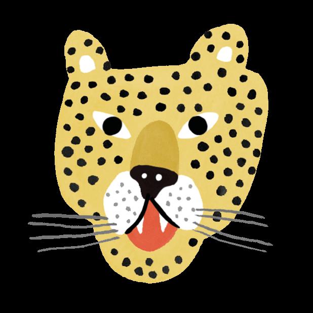 Surprised Cheetah