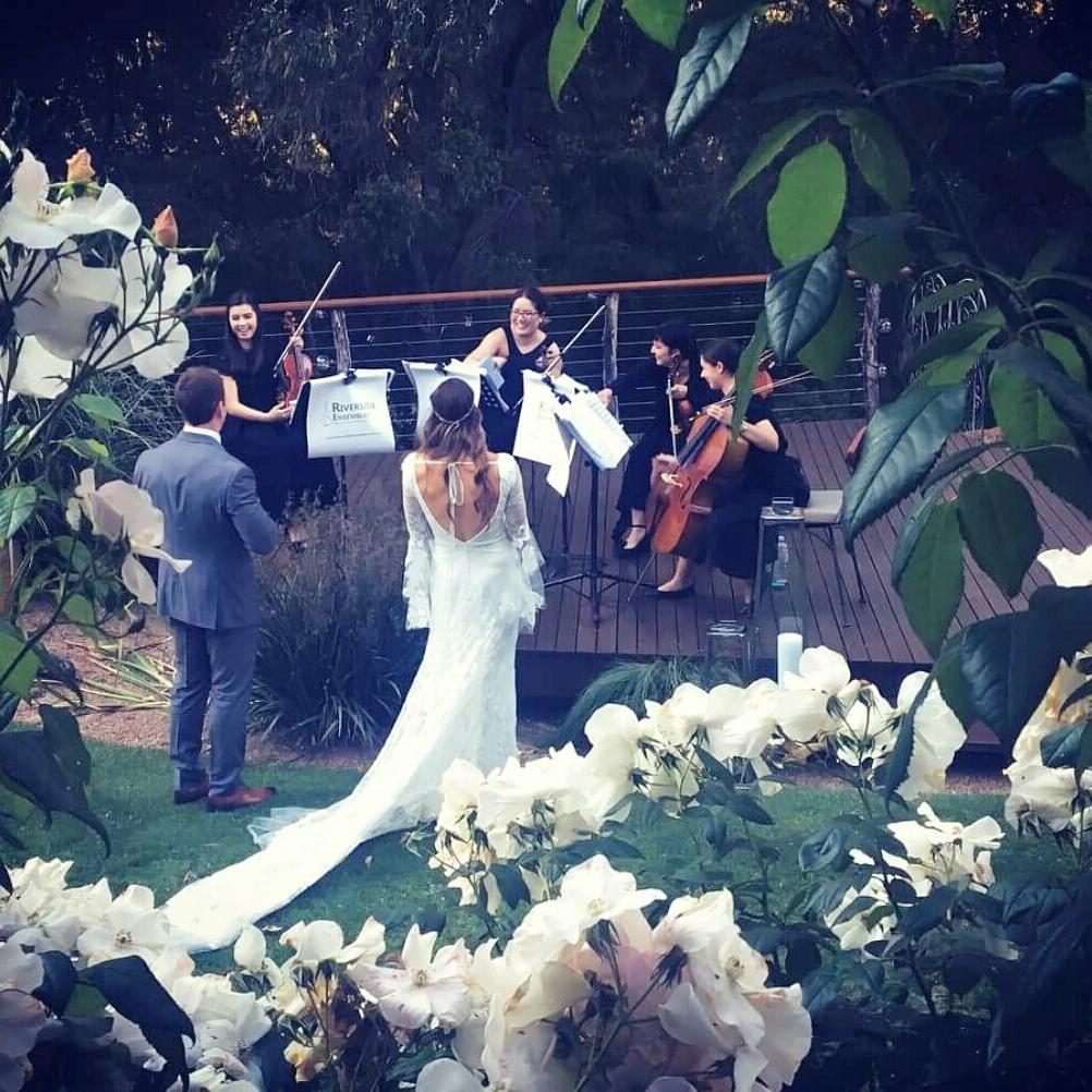 perth-function-string-music-hire-wedding-riverside-quartet-bride-cello-violin-viola