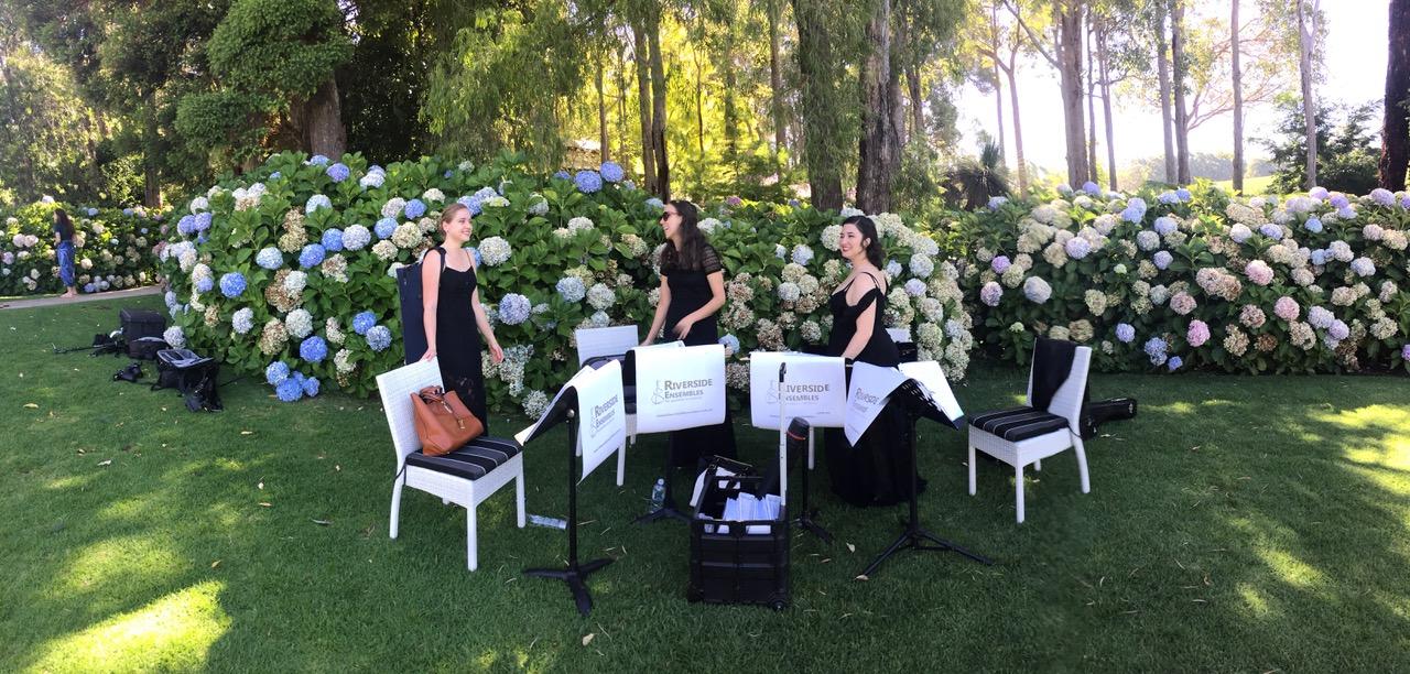 perth-function-string-music-hire-wedding-riverside-musicians-quartet-violinist-cellist-viola