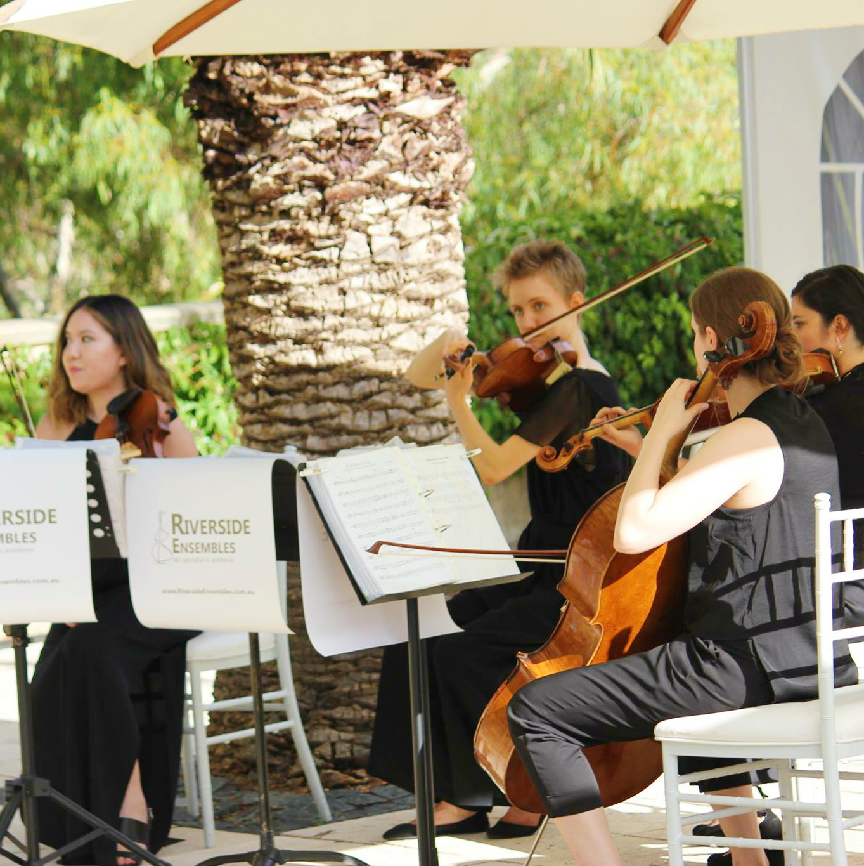 perth-function-string-music-hire-wedding-riverside-musiciansperth-function-string-music-hire-wedding-riverside-musicians-classical-contemporary-quartet-caversham-violin-cello