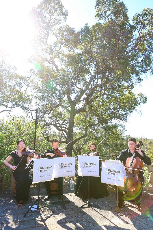 perth-function-string-music-hire-wedding-riverside-musiciansperth-function-string-music-hire-wedding-riverside-musicians-classical-contemporary-quartet-violinist-celloist-viola