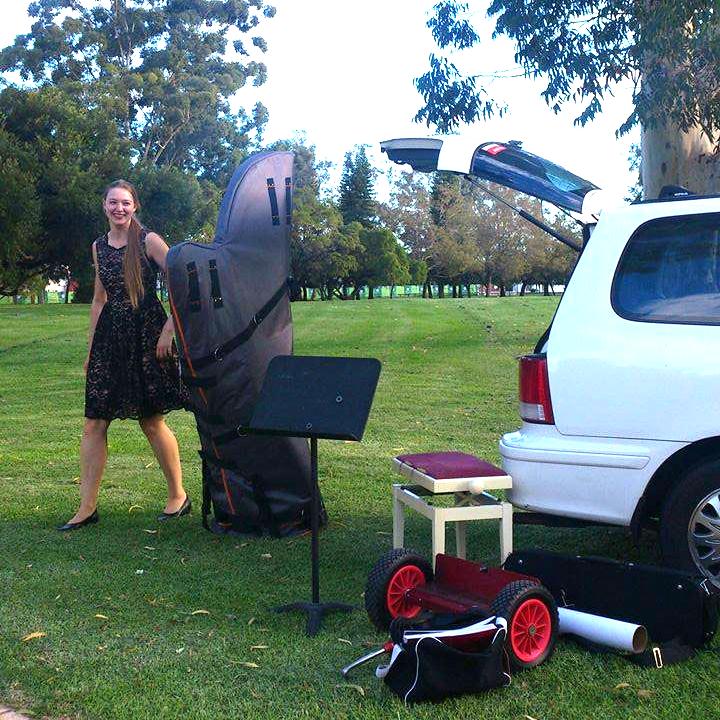 perth-function-string-music-hire-wedding-riverside-musiciansperth-function-string-music-hire-wedding-riverside-musicians-classical-contemporary-harp-harpist