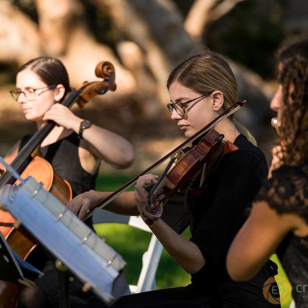 perth-function-string-music-hire-wedding-riverside-flute-trio-violin-cello