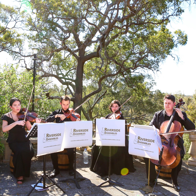 perth-function-string-music-hire-wedding-riverside-quartet-violin-cello-viola
