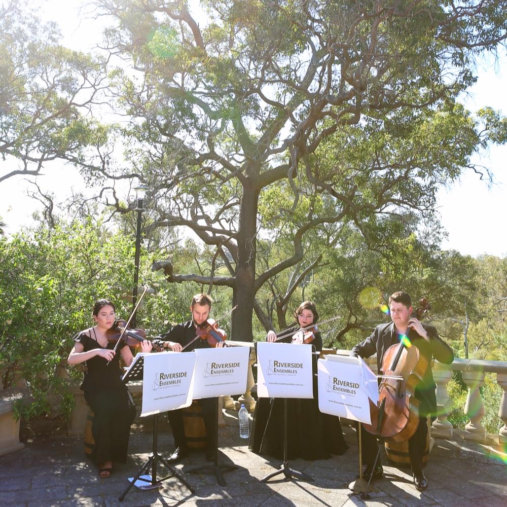 perth-function-string-music-hire-wedding-riverside-quartet-dunsborough-violin-cello-viola