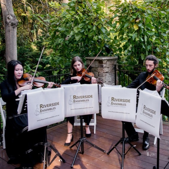 perth-function-string-music-hire-wedding-riverside-musiciansperth-function-string-music-hire-wedding-riverside-musicians-classical-contemporary-quartet-violin-viola-cello