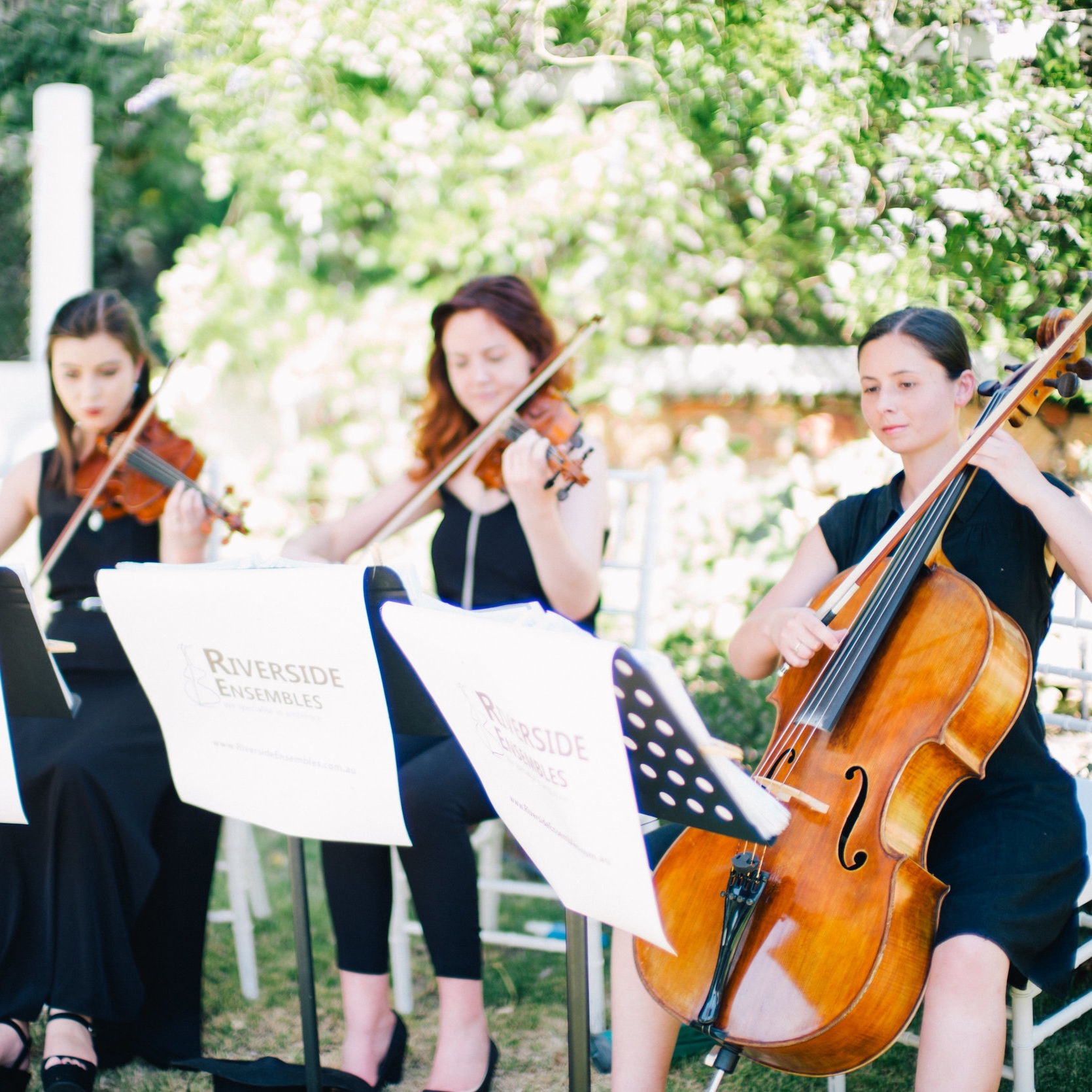 perth-function-string-music-hire-wedding-riverside-musiciansperth-function-string-music-hire-wedding-riverside-musicians-classical-contemporary-trio-violinist-cellist