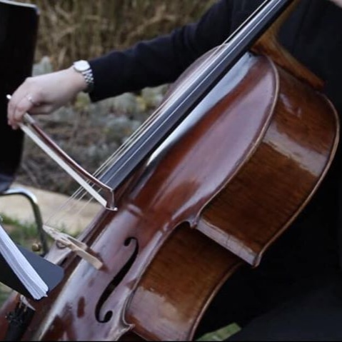 perth-function-string-music-hire-wedding-riverside-musiciansperth-function-string-music-hire-wedding-riverside-musicians-classical-contemporary-cello-marriage-cellist