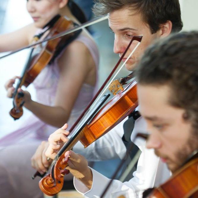 perth-function-string-music-hire-wedding-riverside-musiciansperth-function-string-music-hire-wedding-riverside-musicians-classical-contemporary-quartet-viola-violins-cello