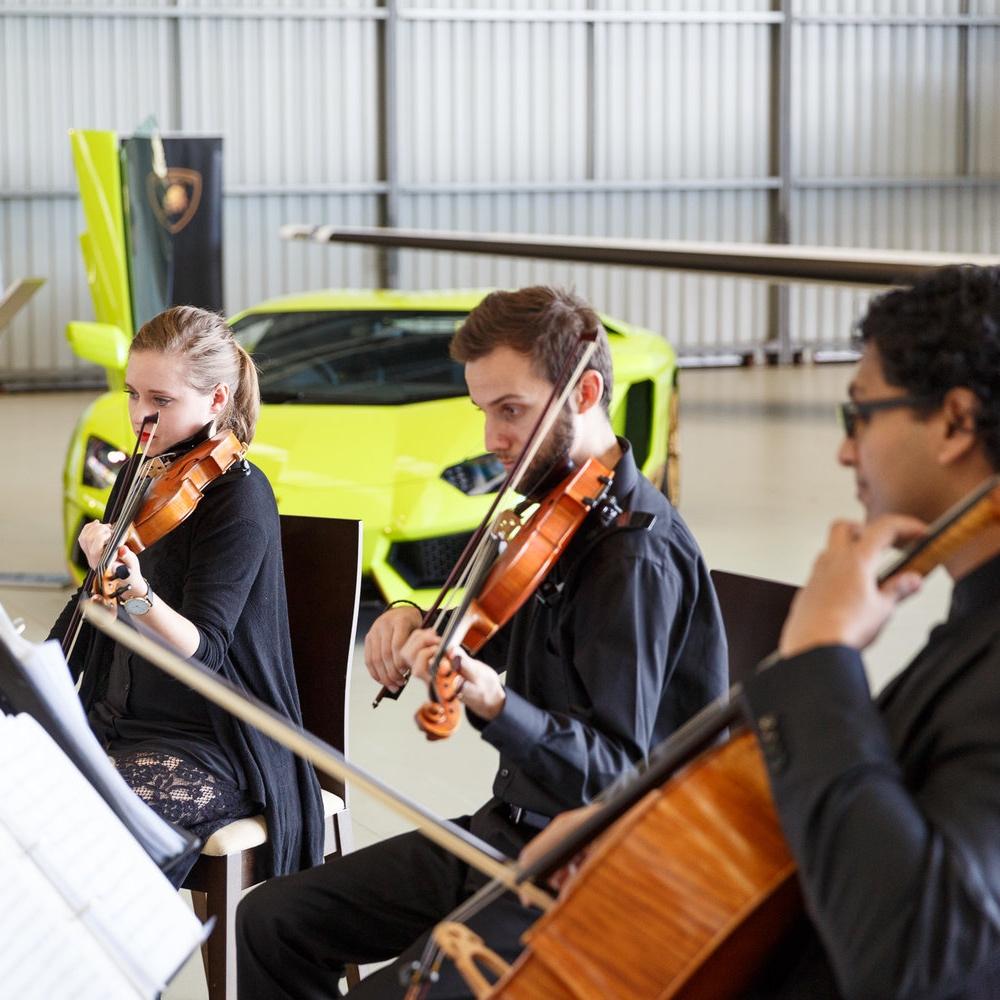 perth-function-string-music-hire-wedding-riverside-musiciansperth-function-string-music-hire-wedding-riverside-musicians-classical-contemporary-barbagallo-violin-quartet-viola-cello