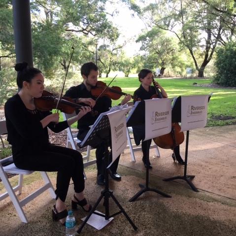 perth-function-string-music-hire-wedding-riverside-musiciansperth-function-string-music-hire-wedding-riverside-musicians-classical-contemporary-trio-violins-cello-violinist-cellist-kings-park