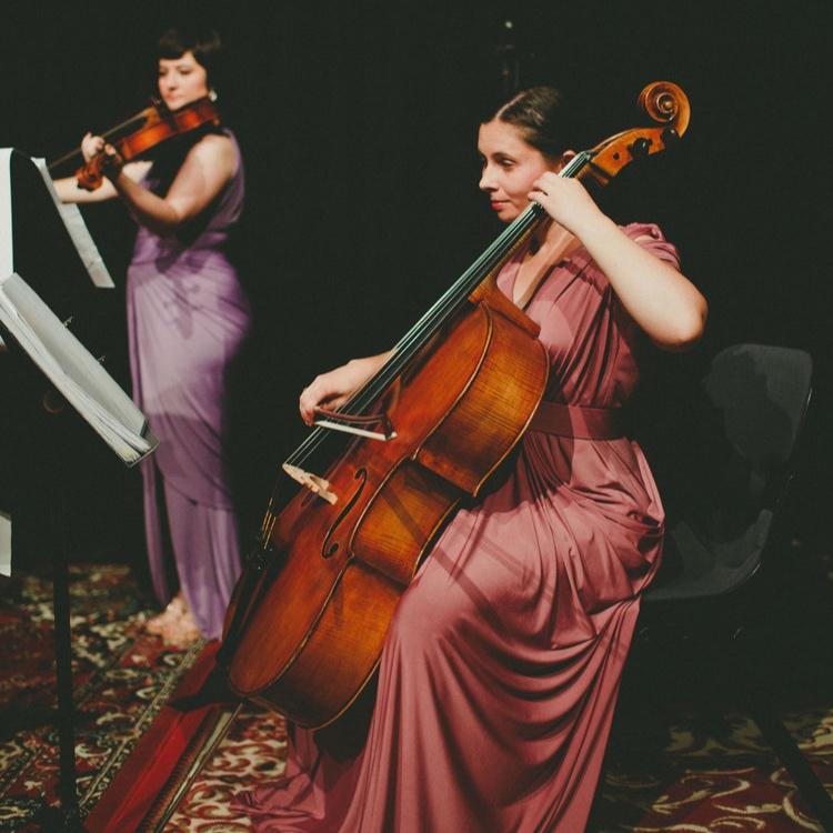 perth-function-string-music-hire-wedding-riverside-musiciansperth-function-string-music-hire-wedding-riverside-musicians-classical-contemporary-quartet-performance-cello-viola