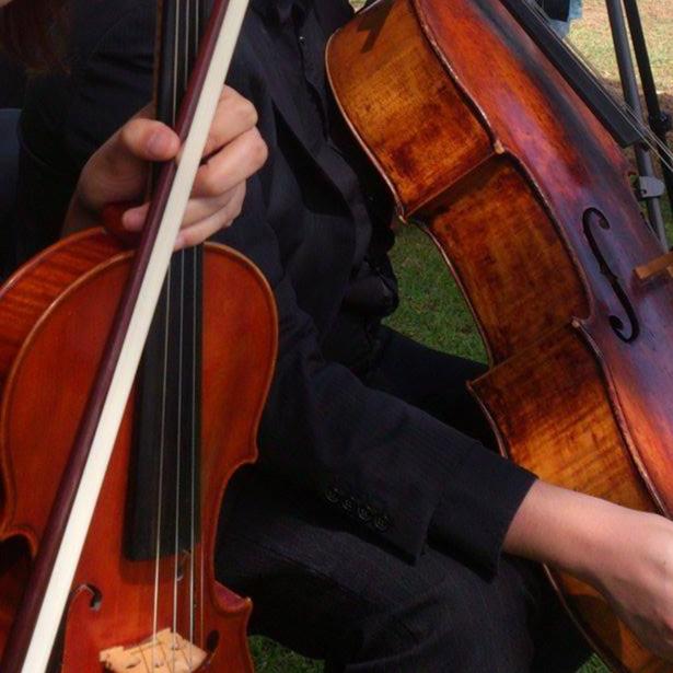 perth-function-string-music-hire-wedding-riverside-musiciansperth-function-string-music-hire-wedding-riverside-musicians-classical-contemporary-viola-cello