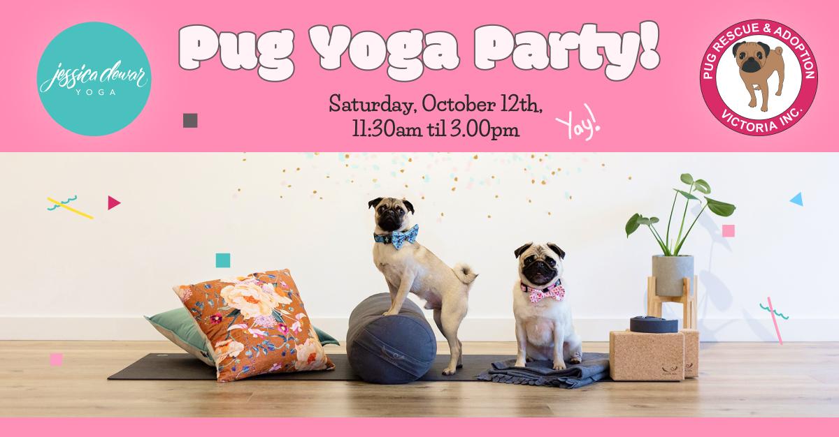 Pug Yoga Party_ Jessica Dewar Yoga and Pug Rescue & Adoption (1).jpg