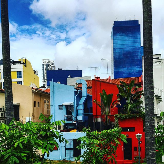 Colours of Singapore, pre studio wandering #singapore #outram #colours #houses #holiday #exploring #summer #red #blue #yellow
