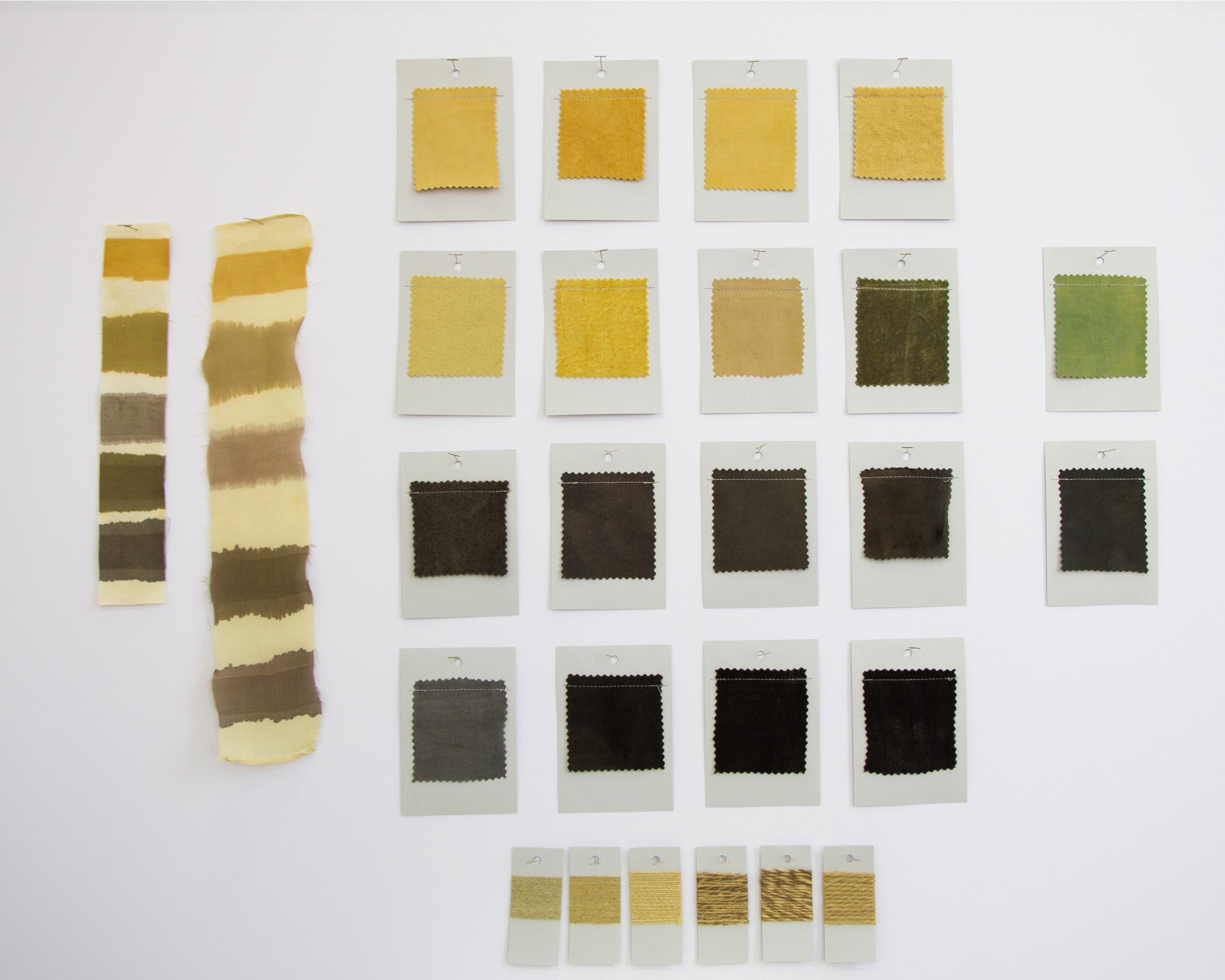 Myrobalan Dye Card