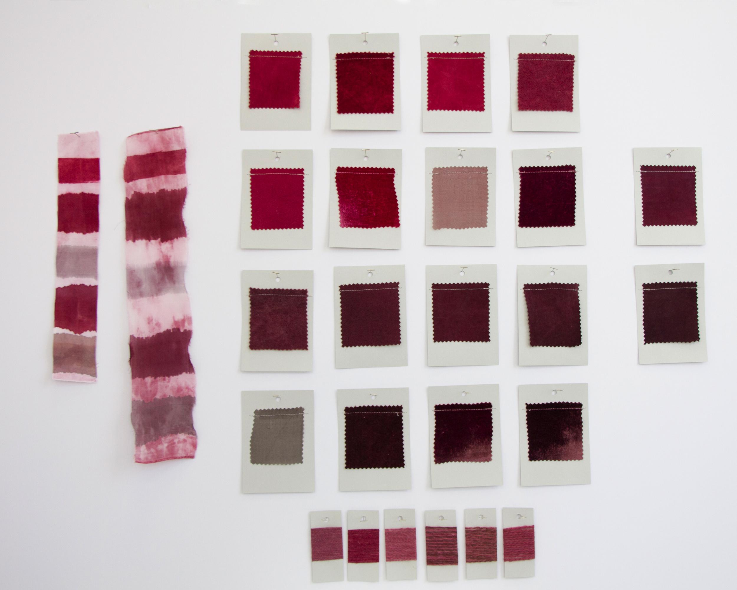Lac Dye Card