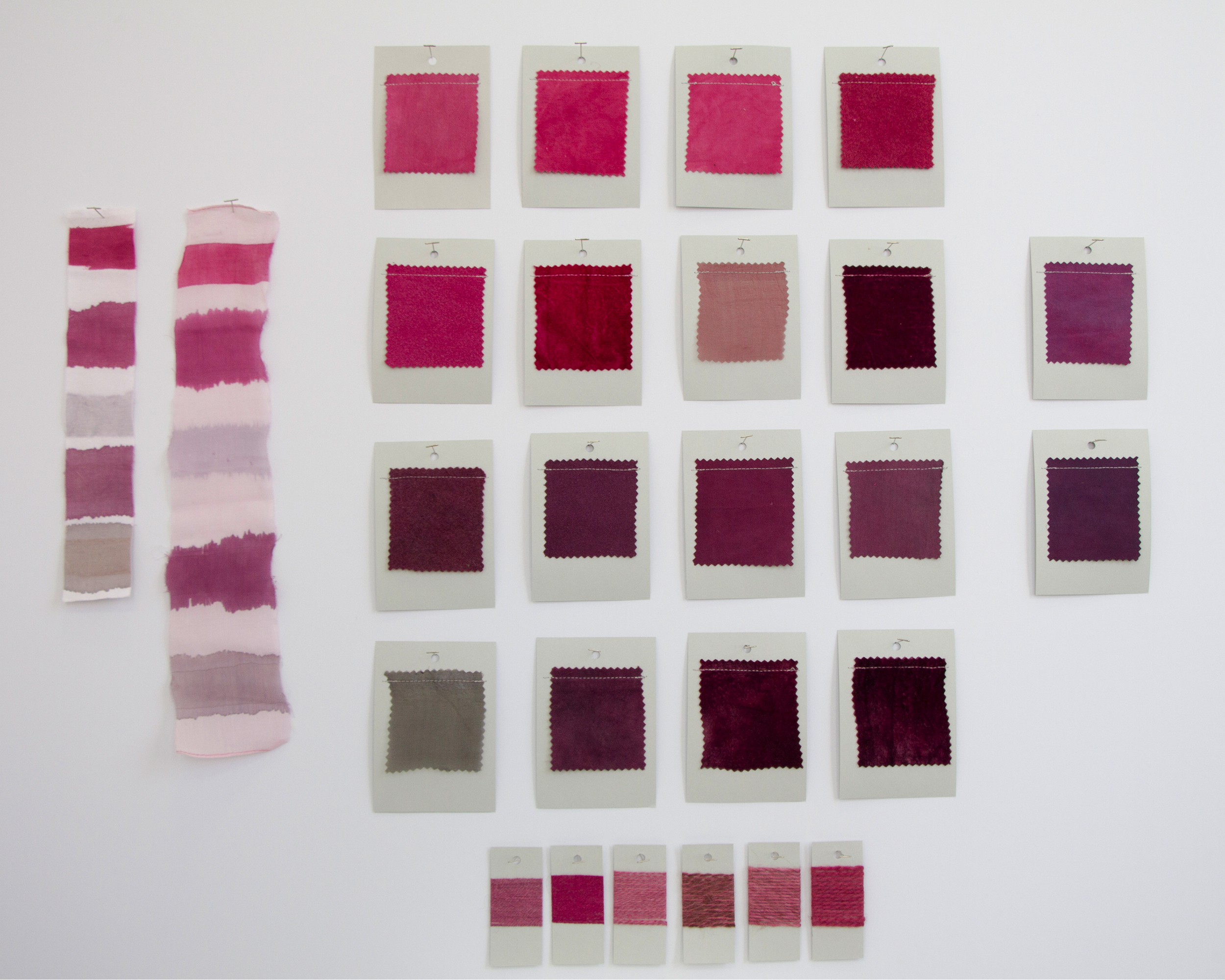 Cochineal Dye Card