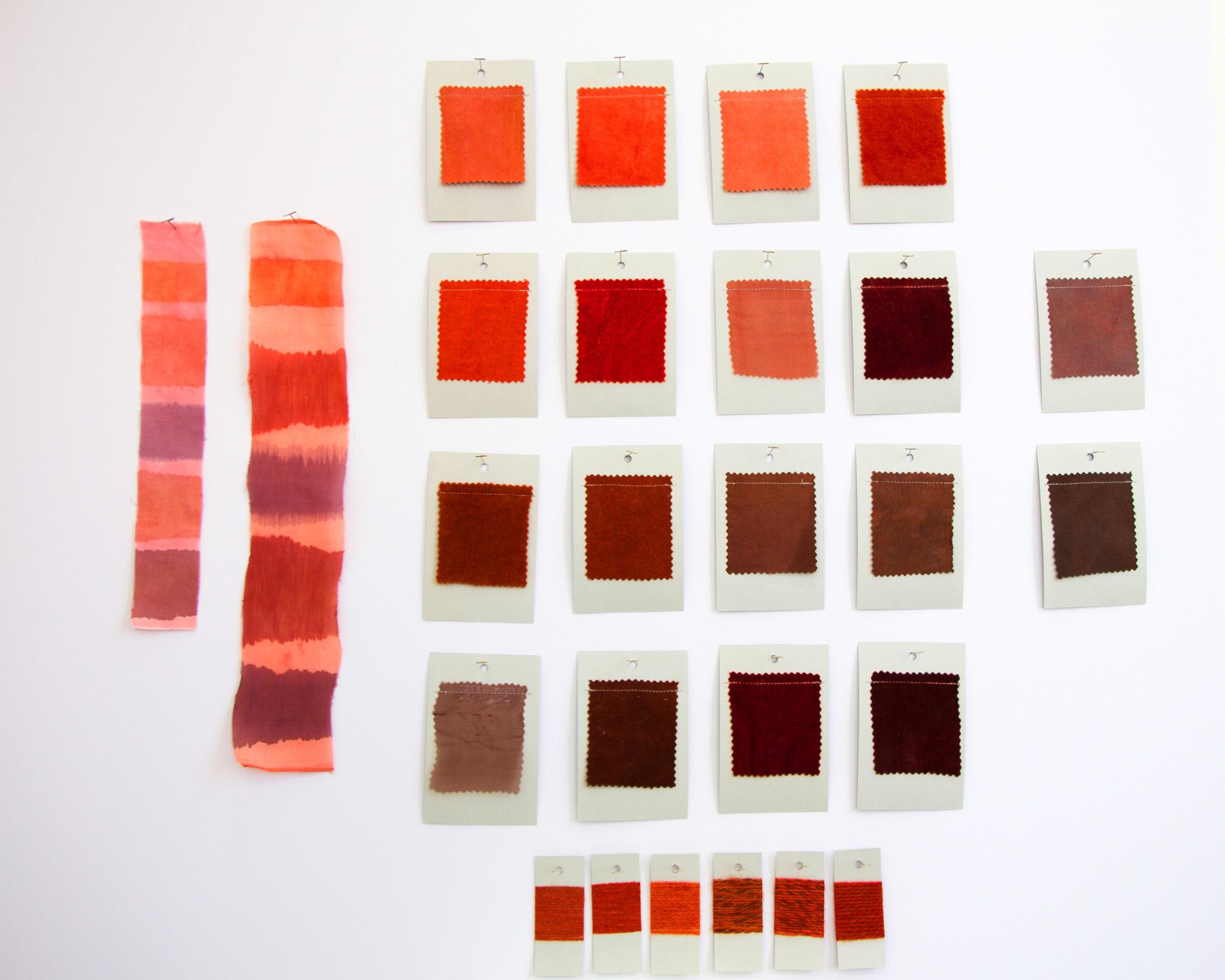 Final Dye Cards-MD.jpg