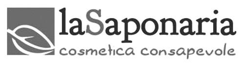 saponaria.jpg