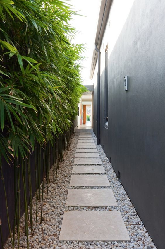 Bamboo looks great topped with loose pebbles for a low maintenance side way.