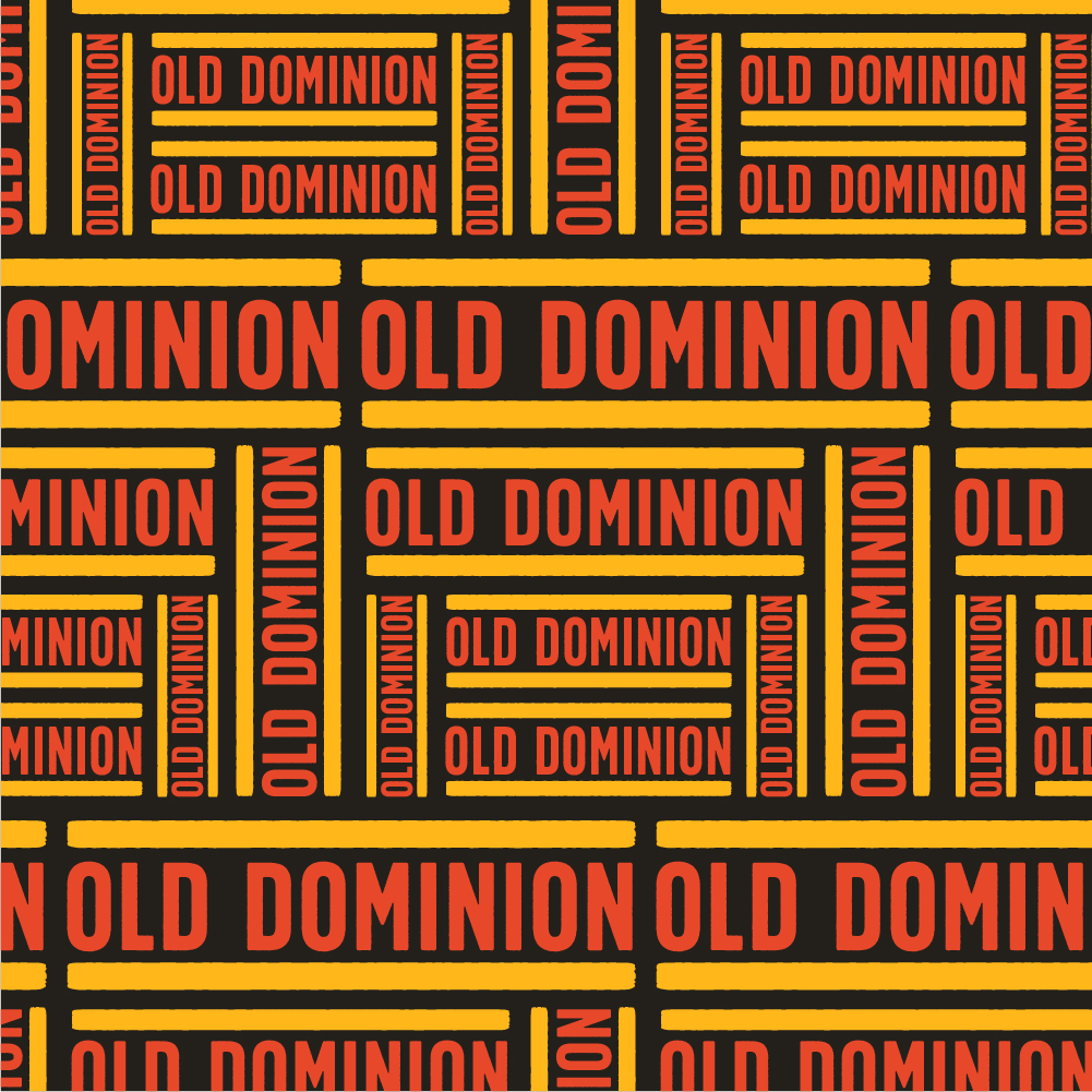 OLD-DOMINION-CONVERSION-VAN-03.jpg