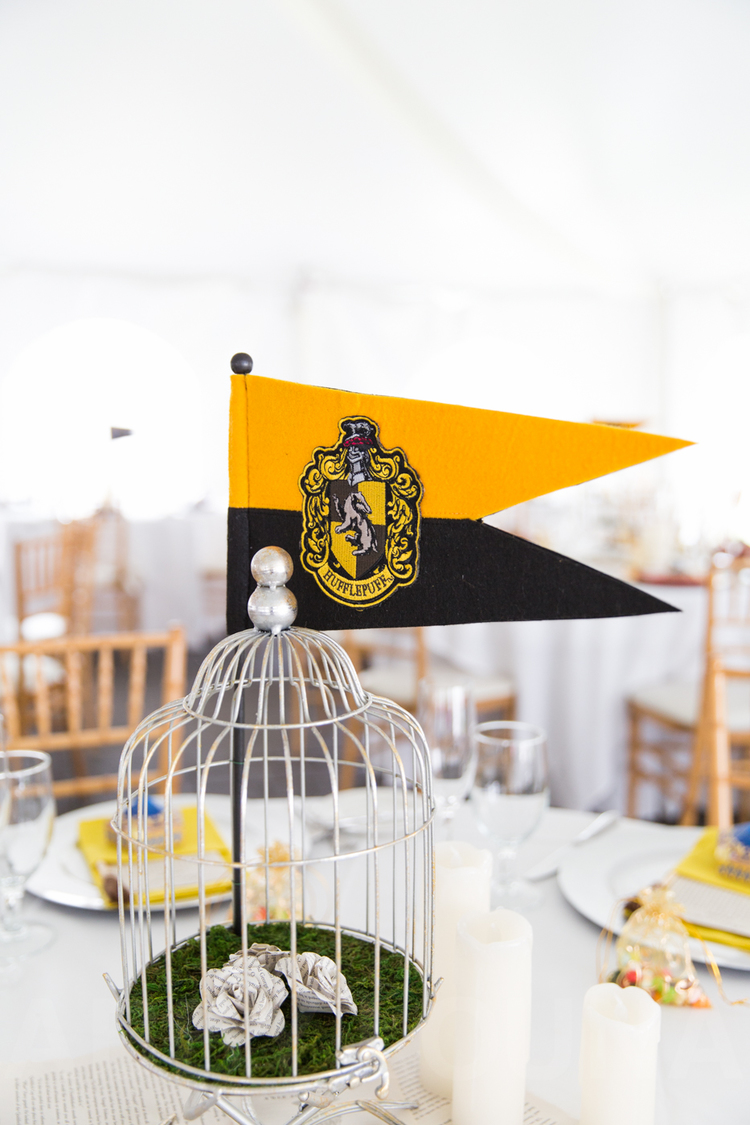 Harry-Potter-Wedding-2015_Ryans9.jpg