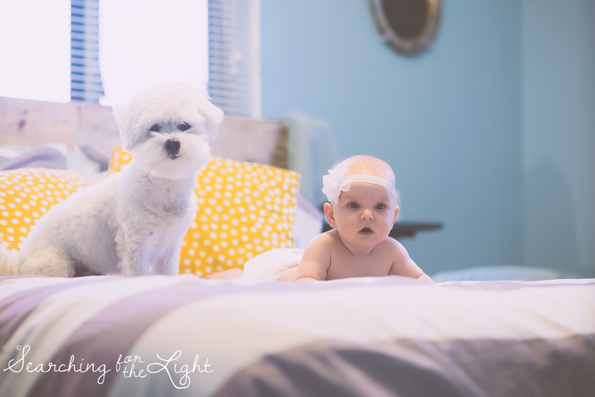 denver baby photographer, 4 month old baby photos