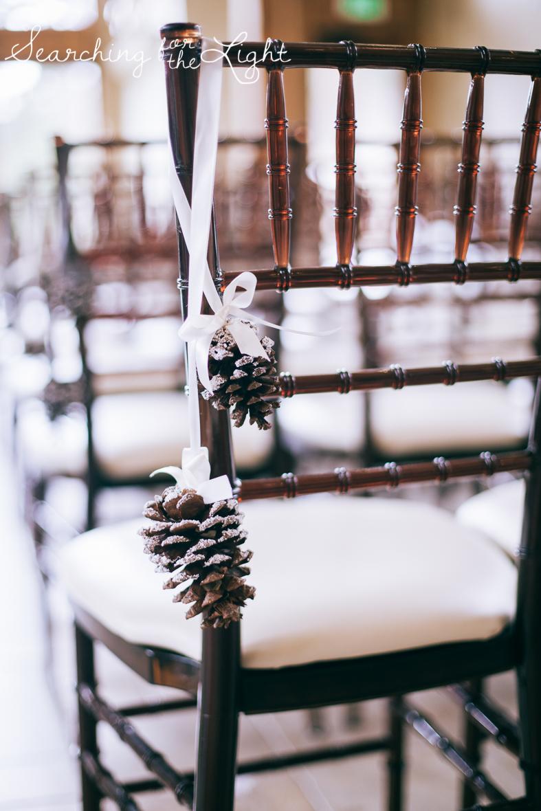 colorado wedding photographer, winter estes park wedding, winter wedding, pinecone decorations