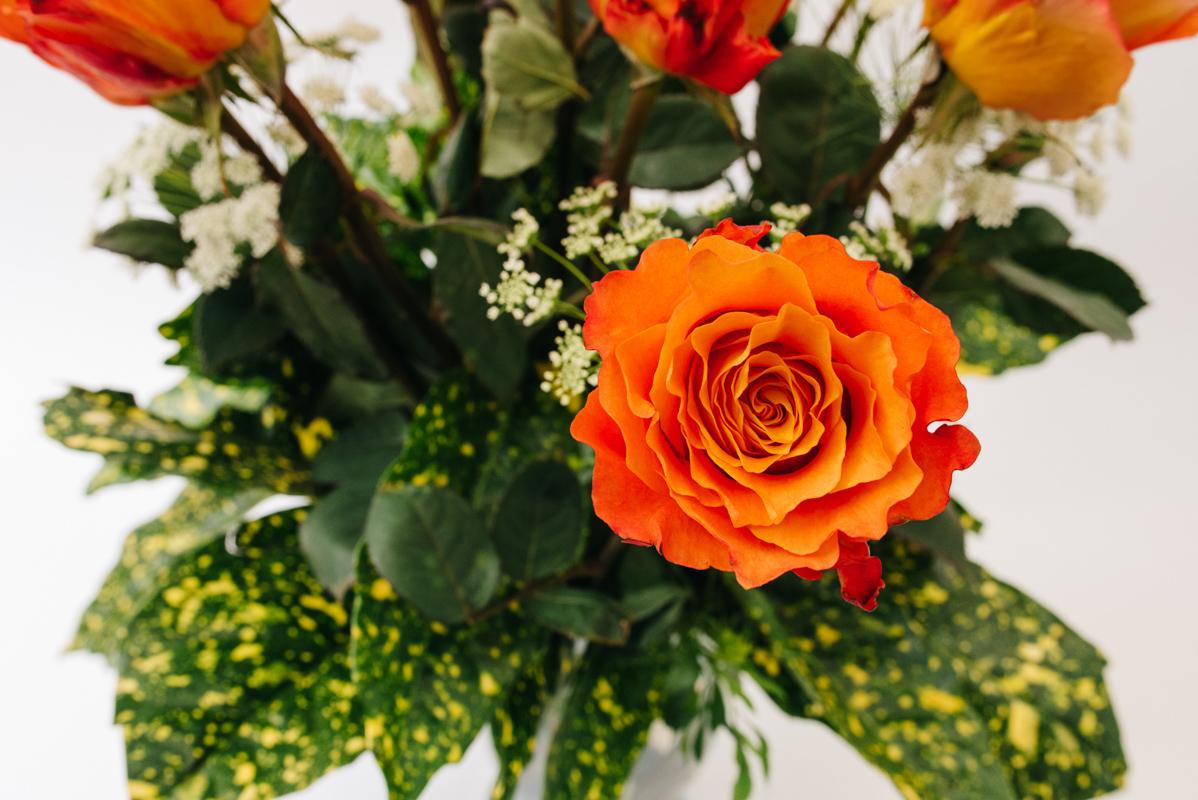 12-denver-colorado-small-business-photographerMy-Flower-Art-Valentines-01.25.18-1134.jpg