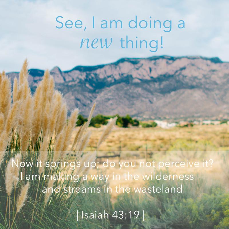Scripture Art | Scripture Photos | A New Thing | Isaiah 43:19