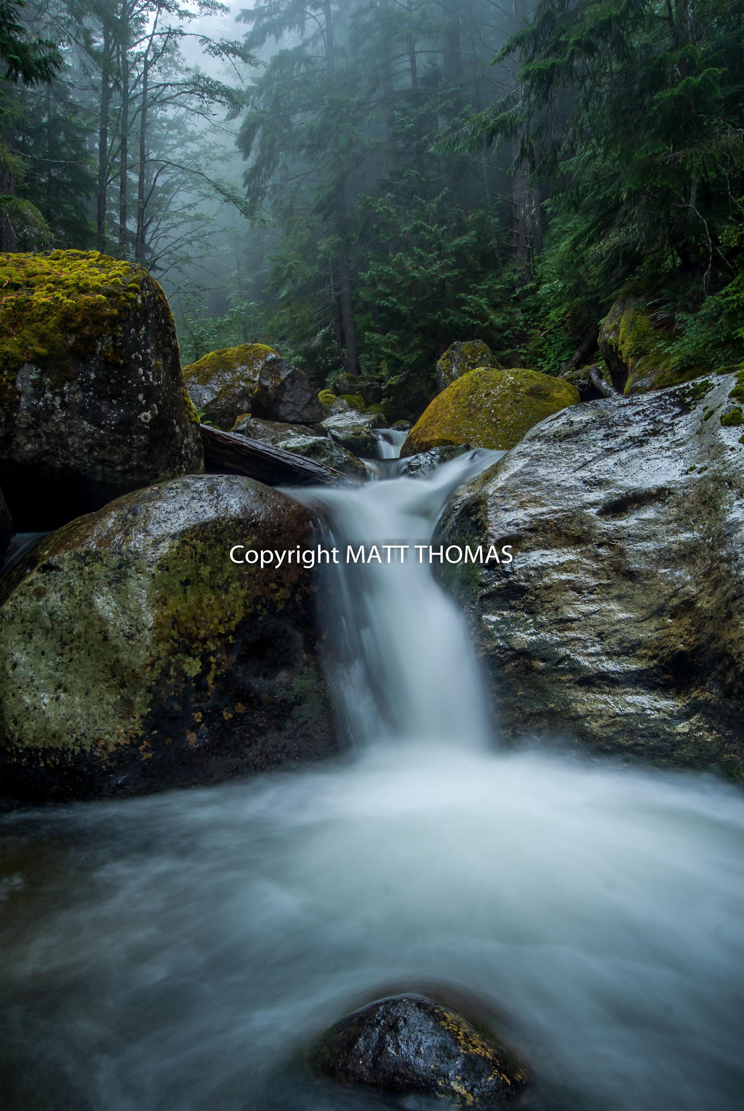 Nickel Creek - Mt. Rainier N.P.