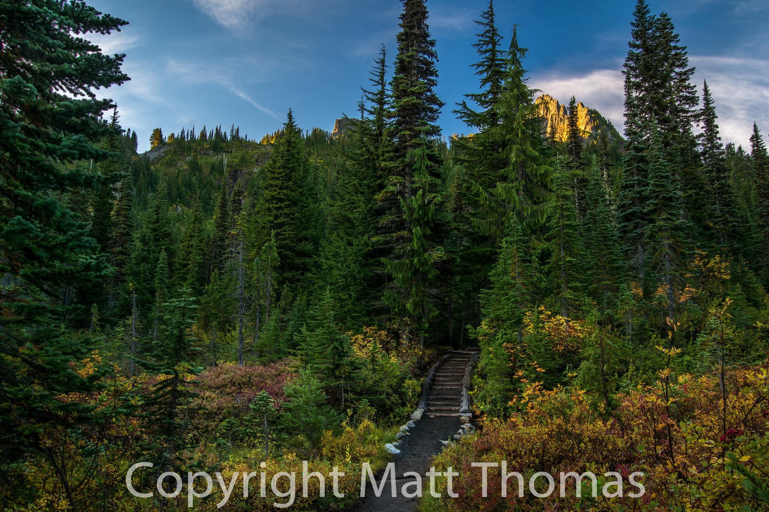 Trail to Pinnacle Peak