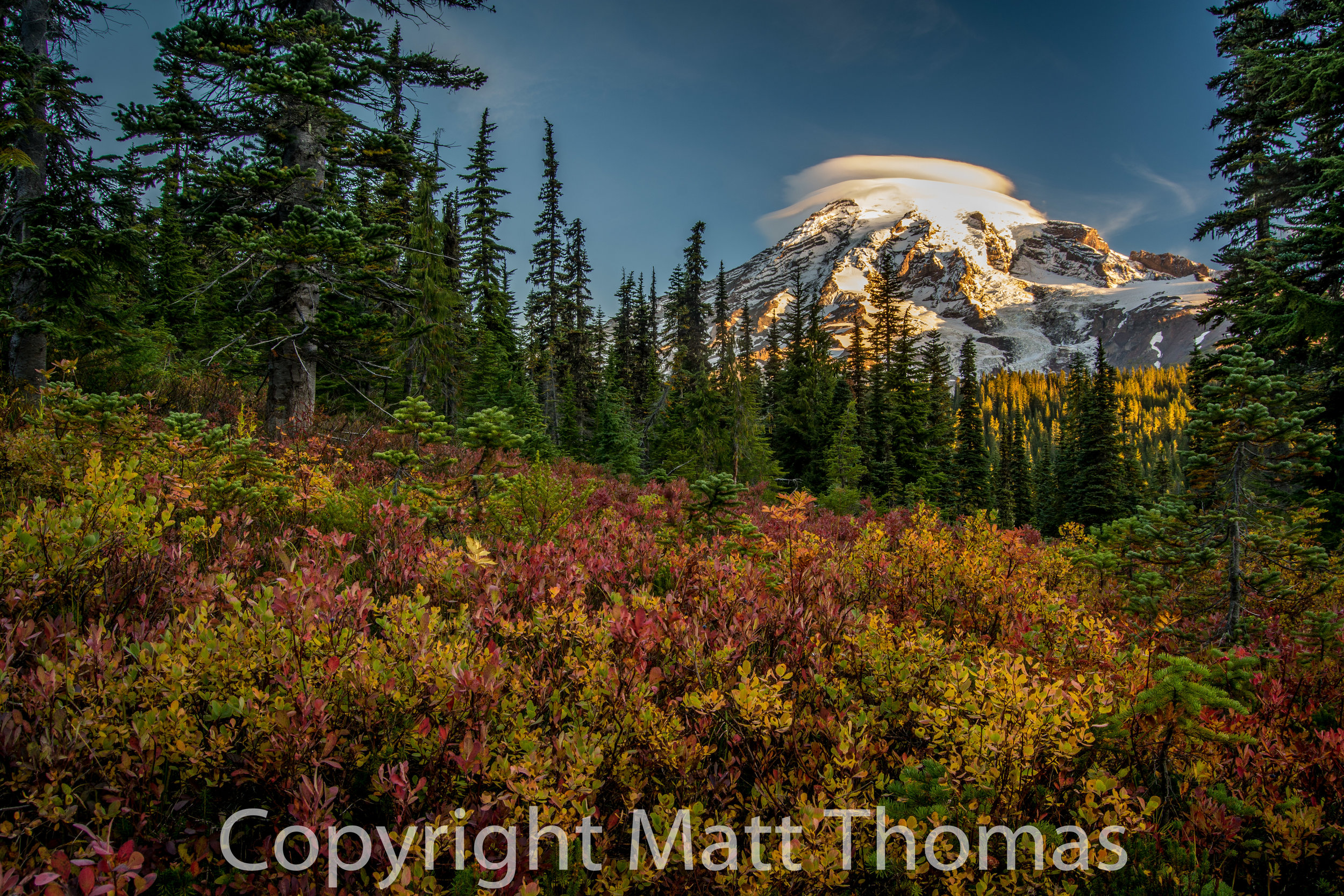 Fall- Mt. Rainier