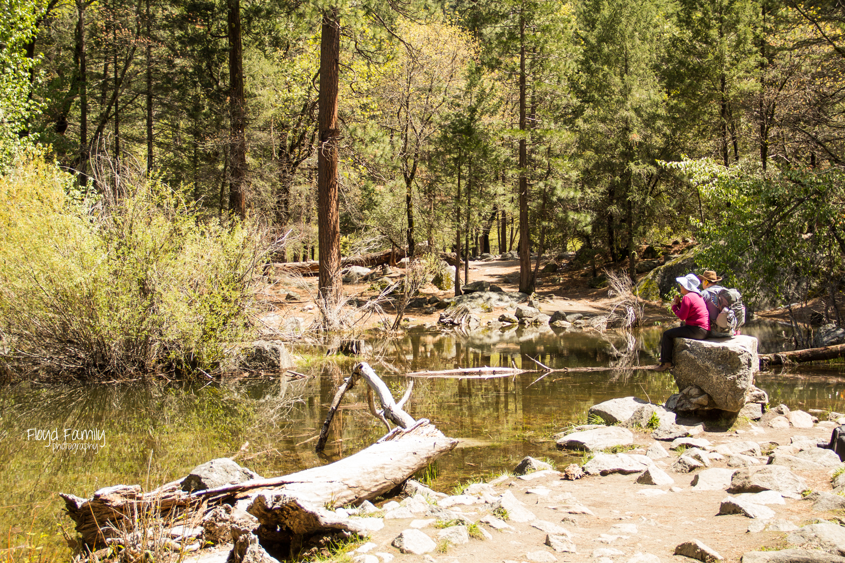 My everyday: Clickin walk 2015   Placerville-Family-Photographer